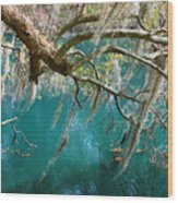 Spanish Moss And Emerald Green Water Wood Print
