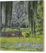 Spanish Moss Wood Print