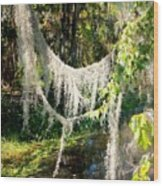 Spanish Moss Over The Swamp Wood Print