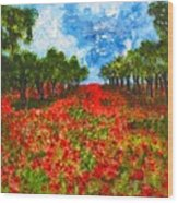 Spanish Poppies Wood Print