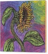 Spanish Sunflower Wood Print