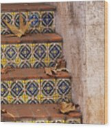 Spanish Tile Stair  Wood Print