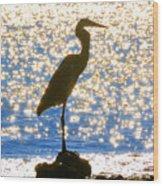 Sparkling Egret Wood Print