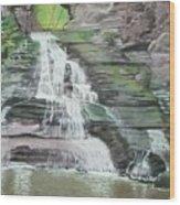 Sparkling Falls Wood Print