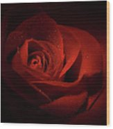 Sparkling Red Rose Wood Print