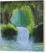 Sparkling Waterfall Wood Print