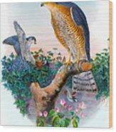 Sparrow Hawk Antique Bird Print Joseph Wolf Birds Of Great Britain  Wood Print