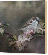 Sparrow In The Garden Wood Print