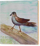 Sparrow On A Branch Wood Print