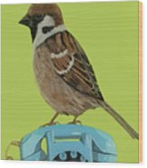 Sparrow Perched On Vintage Telephone Wood Print