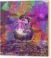 Sparrow Sperling Bird Close  Wood Print