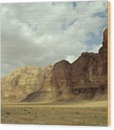 Sparse Tussock And Rock Formations In The Wadi Rum Desert Wood Print by Sami Sarkis