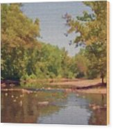Spavinaw Creek Wood Print