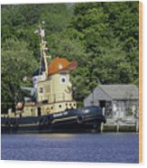 Special Seaport Visitor Wood Print