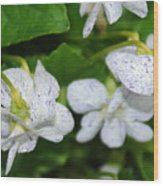Speckled Flowers Wood Print