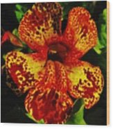Speckled Petunia Wood Print