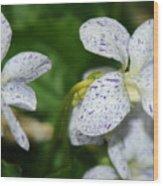 Speckled Wilflower Wood Print