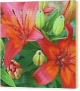 Spectacular Day Lilies Wood Print