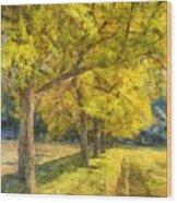 Spectacular  Fall Foliage Pencil  Wood Print