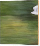 Speed In Flight Wood Print
