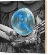 Sphere Of Interest Wood Print