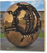 Sphere Within Sphere Wood Print