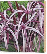 Spider Lily Wood Print