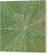 Spider Silk Wood Print