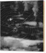 Spider Web Black White Wood Print