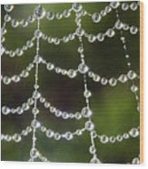 Spider Web Decorated By Morning Fog Wood Print