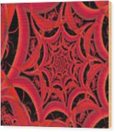 Spider Web Flame Fractal Abstract 793 Wood Print