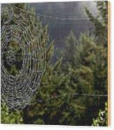 Spider Web Overlook Wood Print