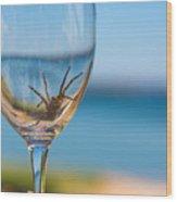 Spider Wine Wood Print