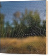 Spiderpane Window Wood Print