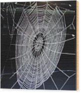 Spider's Web Wood Print