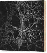 Spiderweb No 4 Wood Print