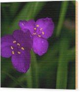 Spiderwort Couple Wood Print