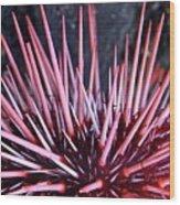 Spike Wood Print