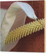 Spikes Wood Print