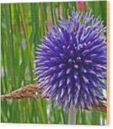 Spiky Blue Wood Print