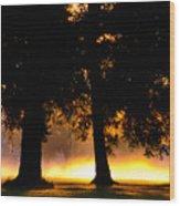 Spilled Suinshine Wood Print