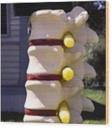 Spine Mailbox Wood Print