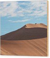 Spine Of The Desert Wood Print