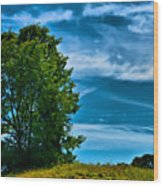 Sping Landscape In Nh 3 Wood Print