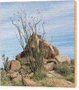 Spiny Cactus East Of Wickenburg Wood Print