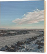 Spiral Jetty 2 Wood Print