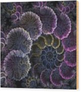 Spiral Of Fay Wood Print
