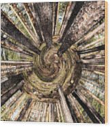 Spiral Of Forest Wood Print