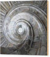 Spiral Staircase Wood Print by Falko Follert