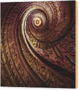 Spiral Staircase In An Old Abby Wood Print